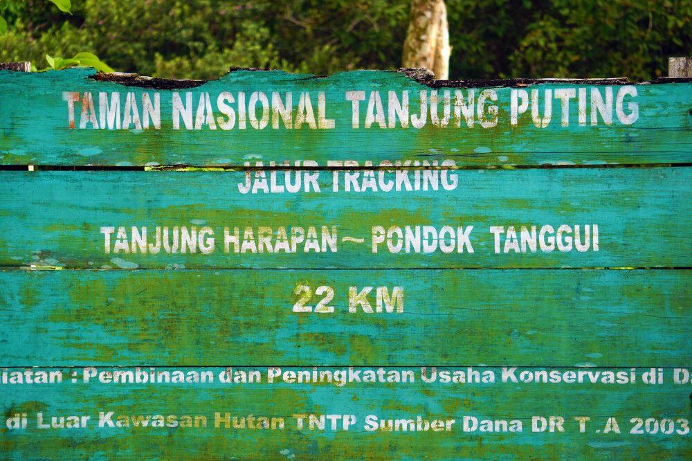 IDO_2016_1MPR_Kalimantan_14.JPG