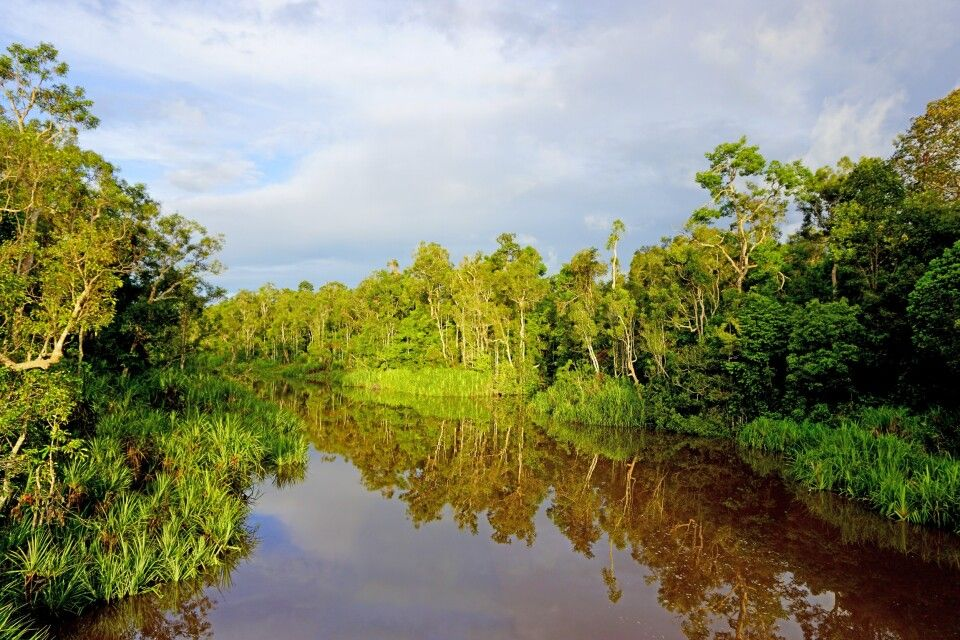 Fluss im Tanjung Puting NP