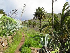 Wandern bei Las Hayas