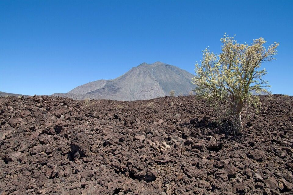 Wanderung Vulkan Tres Virgenes