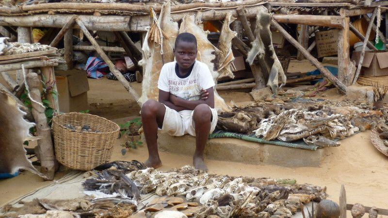 Togo, Fetischmarkt, Verkaeufer © Diamir