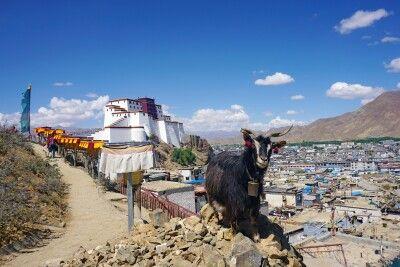 Blick auf Shigatse und seinen Dzong