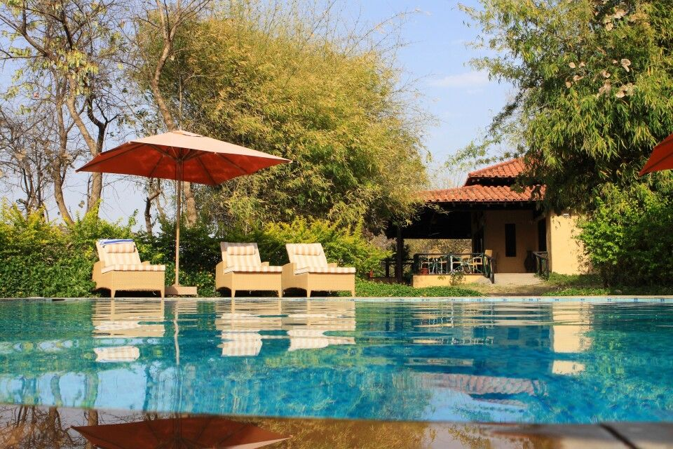Infinity Resort im Bandhavgarh-Nationalpark