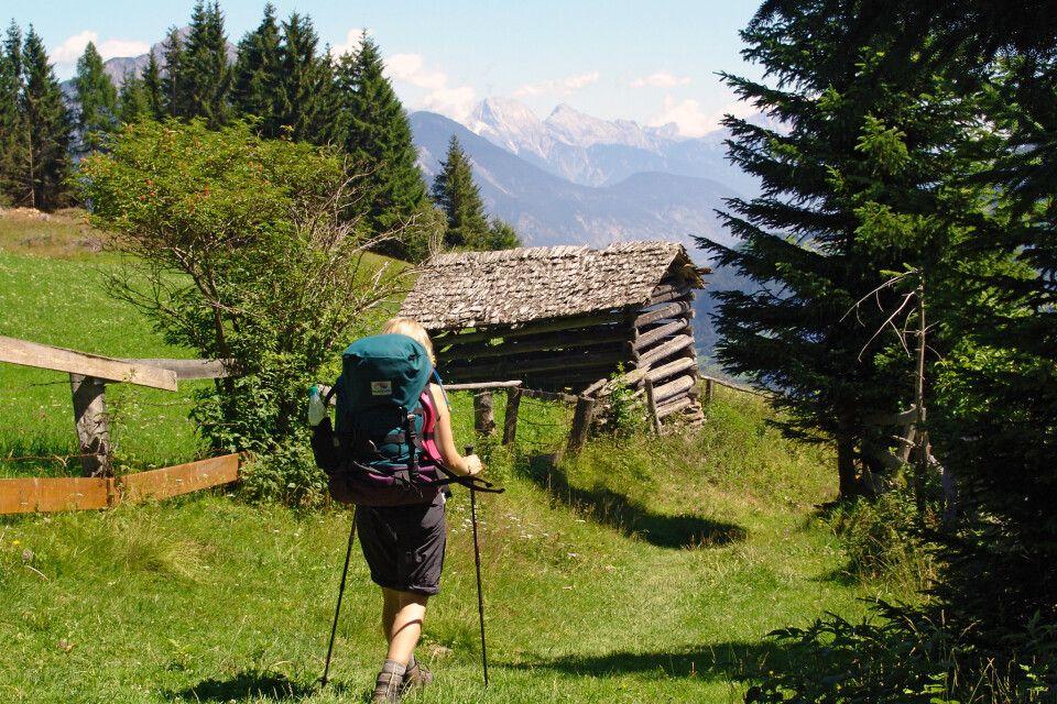 Die Wanderung führt über idyllische Almen.