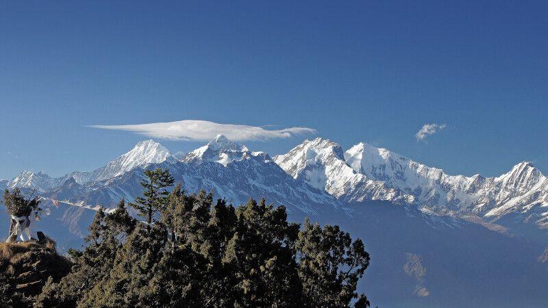 Aufstieg nach Laurebina Yak (3950m) © Diamir