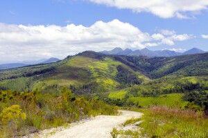Berge um Knysna