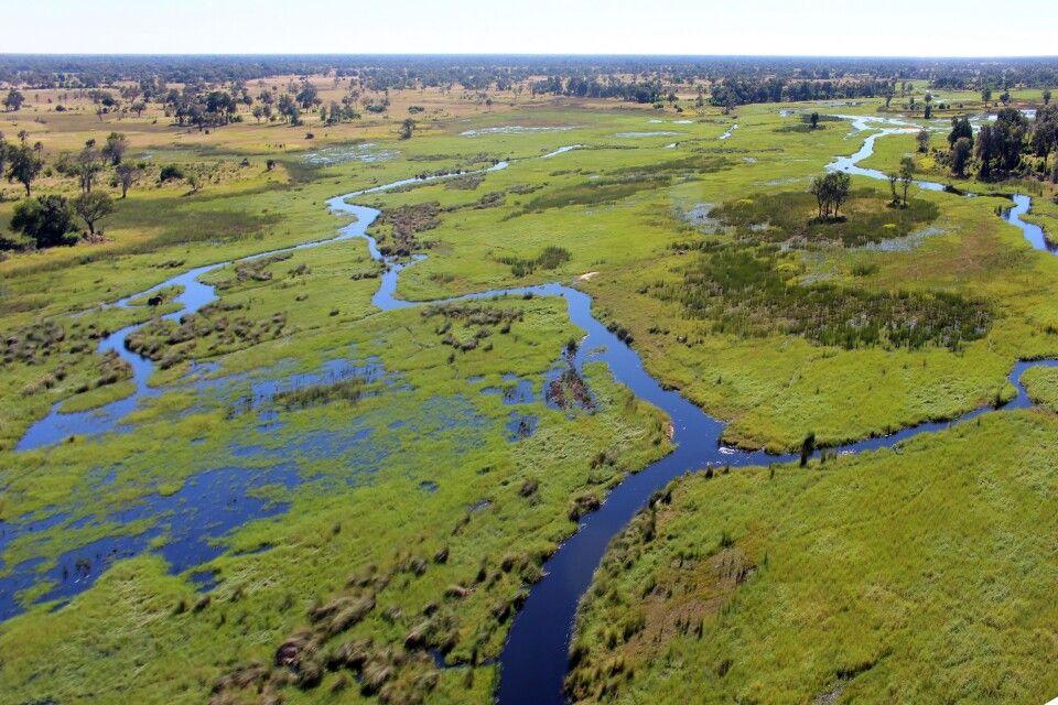 Okavango-Delta