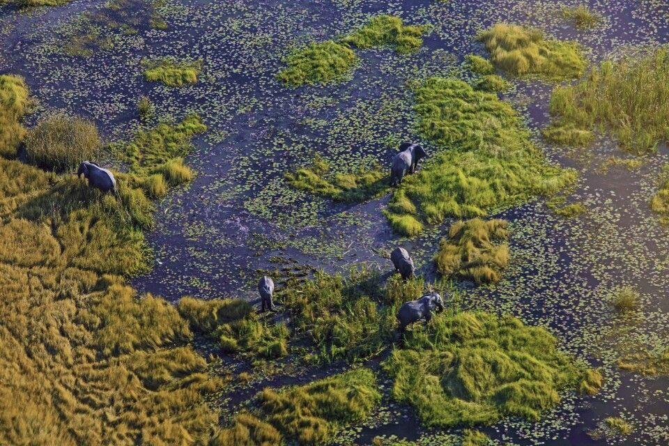 Okavango-Delta von oben