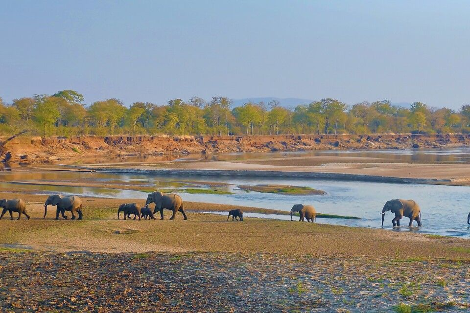 South-Luangwa-Nationalpark
