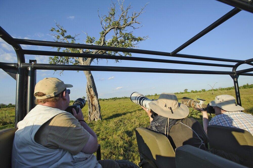 Auf Pirsch im Okavango-Delta