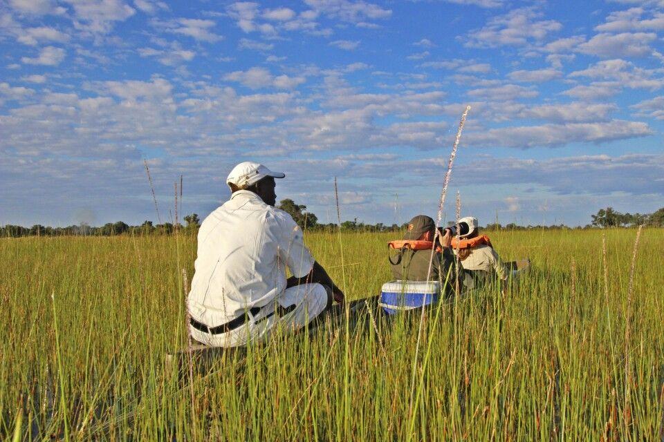 Mokoro Fahrt im Okavango-Delta
