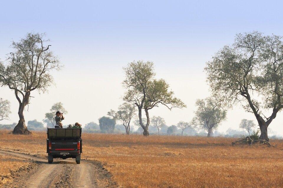 Safari durch den South Luangwa NP
