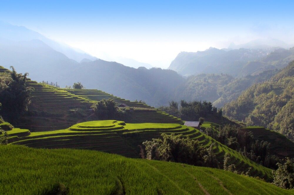 Mu Cang Chai – die schönsten Reisterrassen Vietnams