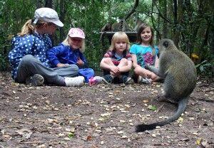 Ein toller Zeitvertreib bei den Affen im Monkeypark
