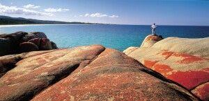 Küste Tasmanien