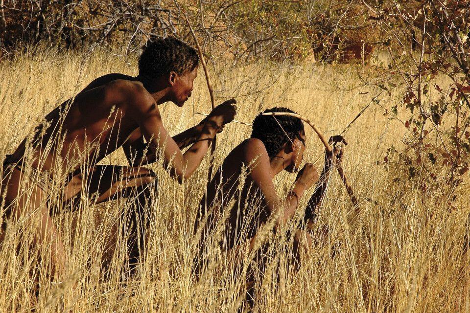 Buschmänner in der Kalahari