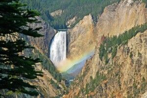 Lower Falls im Yellowstone National Park