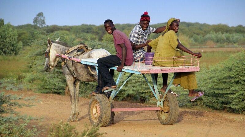 Der Esel-Karren – das Transportmittel im Senegal © Diamir