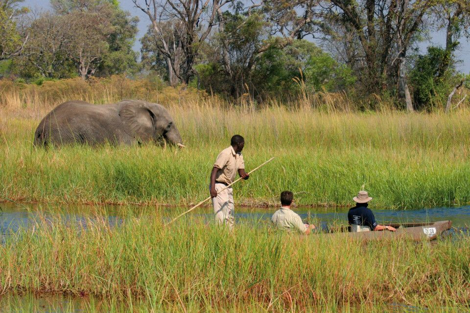 Guns Camp, Okavango-Delta, Botswana