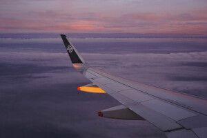 Anflug mit Air NZ auf Auckland