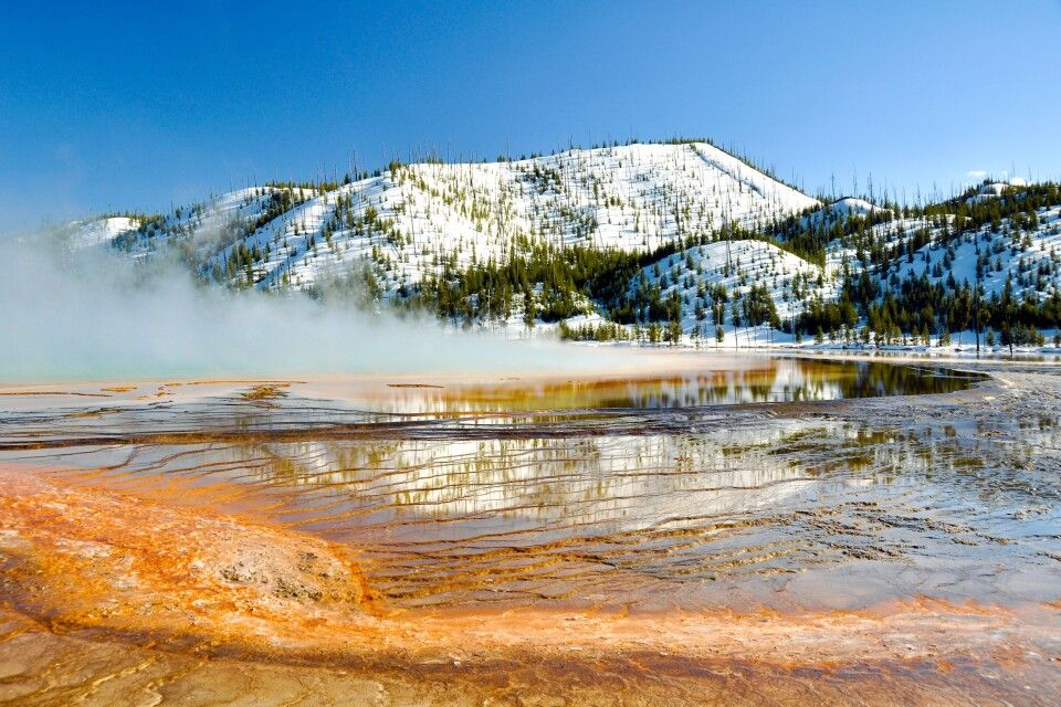 Yellowstone NP im Winter
