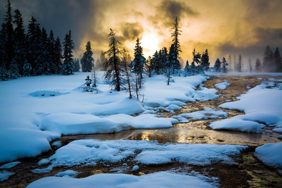 Abendlicht, Yellowstone NP im Winter