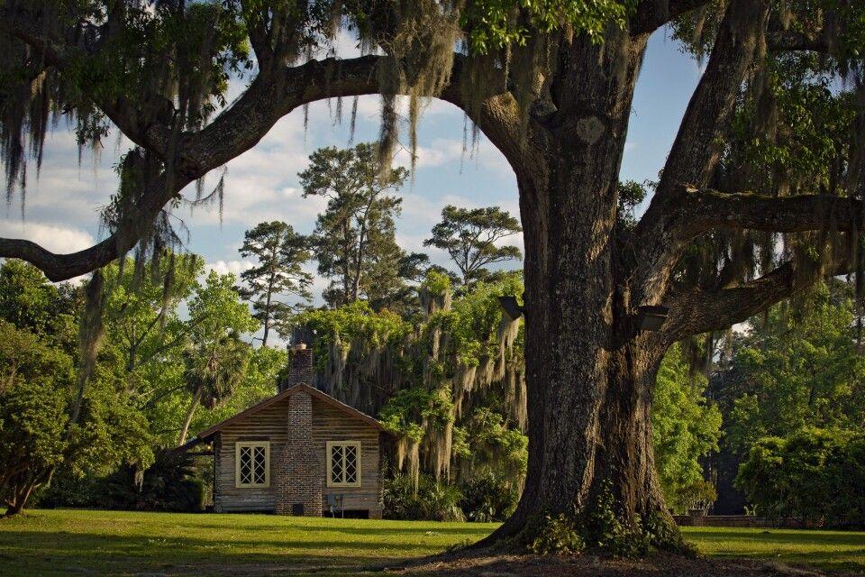 Haus in grüner Umgebung