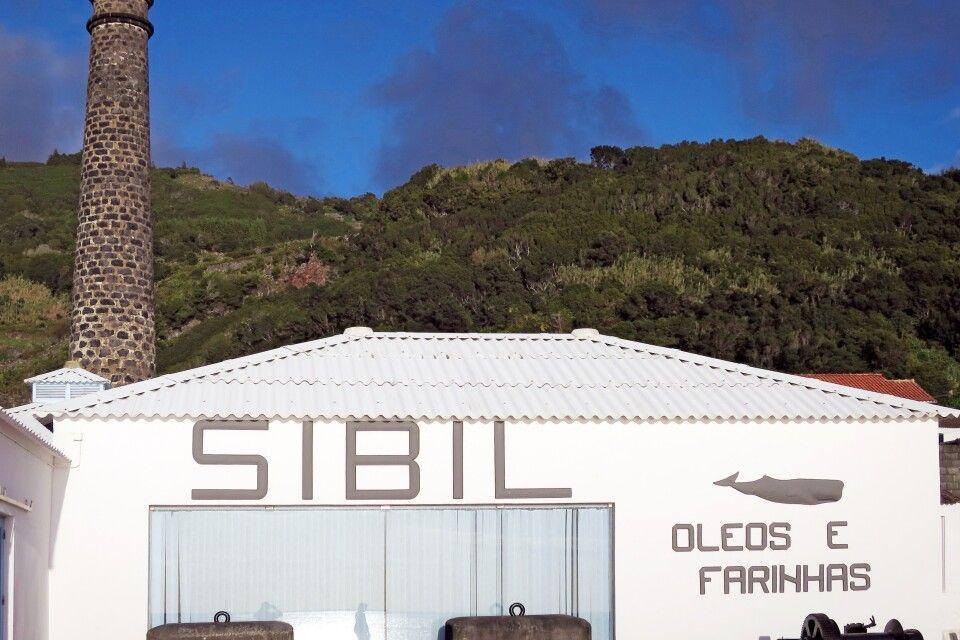 Ehemalige Walverarbeitungsfabrik
