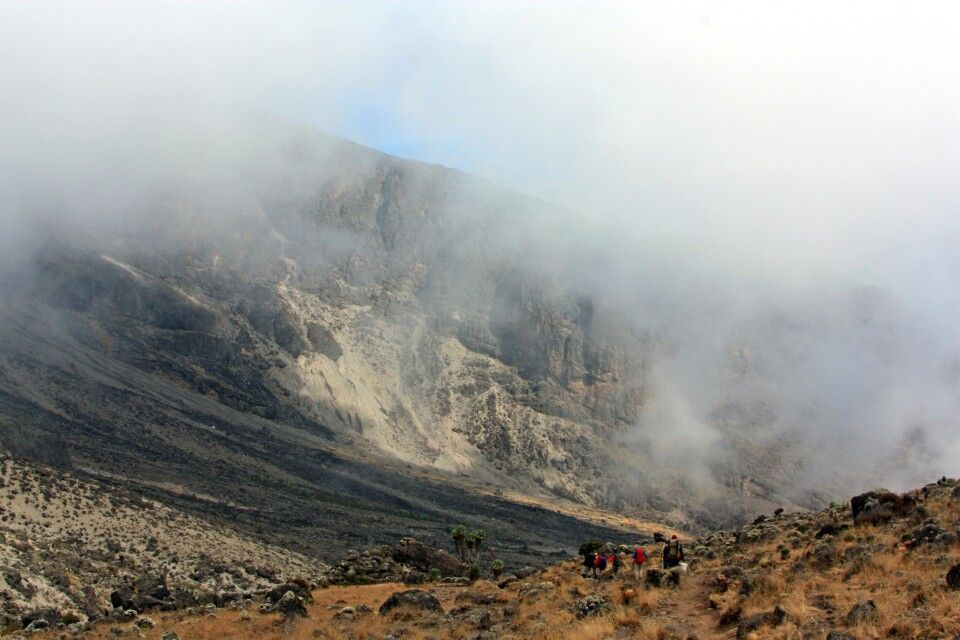 Abstieg in Barranco Camp (3960 m) vorbei an Riesenlobelien