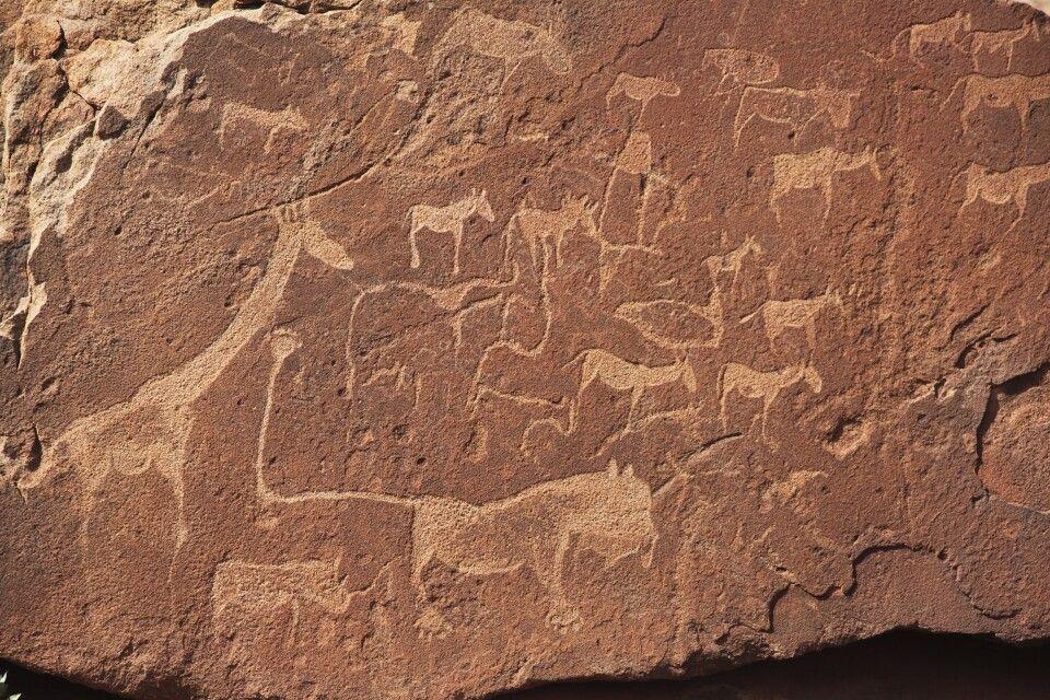 Felszeichnungen bei Twyfelfontein