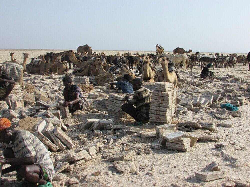 Salzmenschen in der Danakil