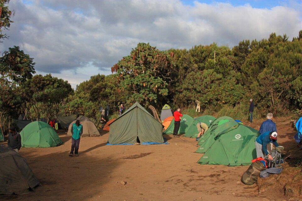 Unser erstes Camp auf 3010 m - Machame Camp