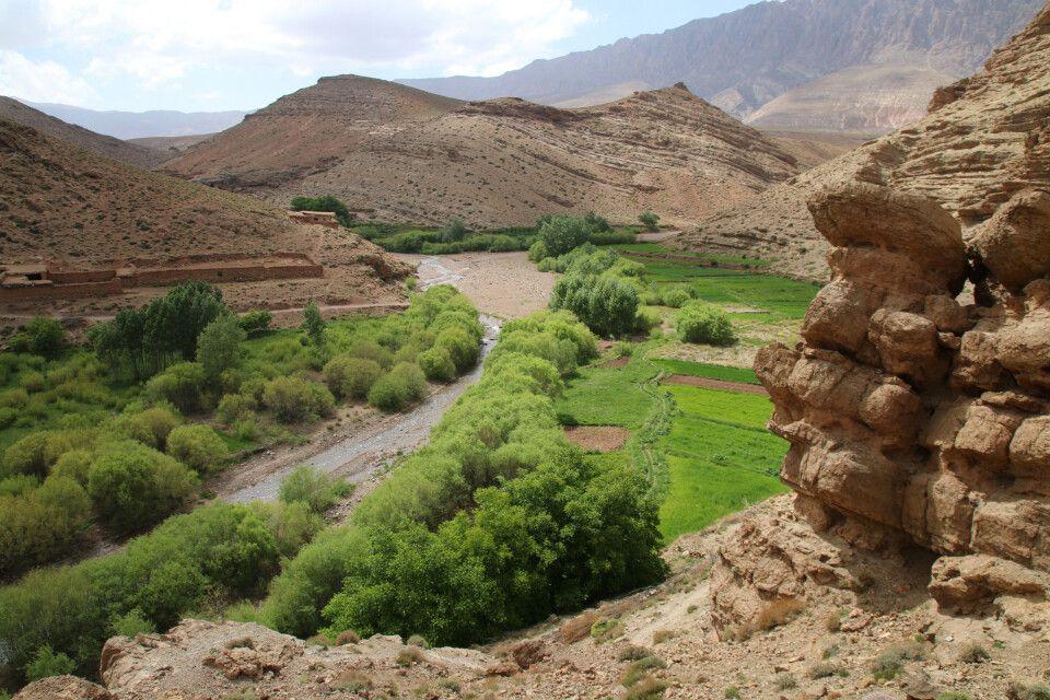 Wo ausreichend Wasser fließt, grünt und blüht die Wüste