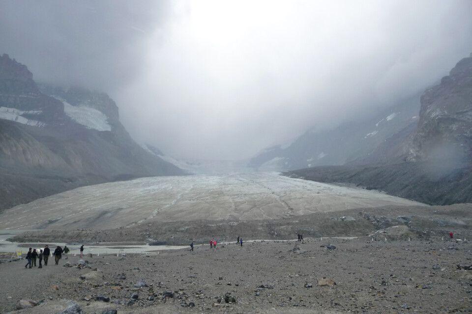 Der Athabasca Gletscher am Icefield Parkway