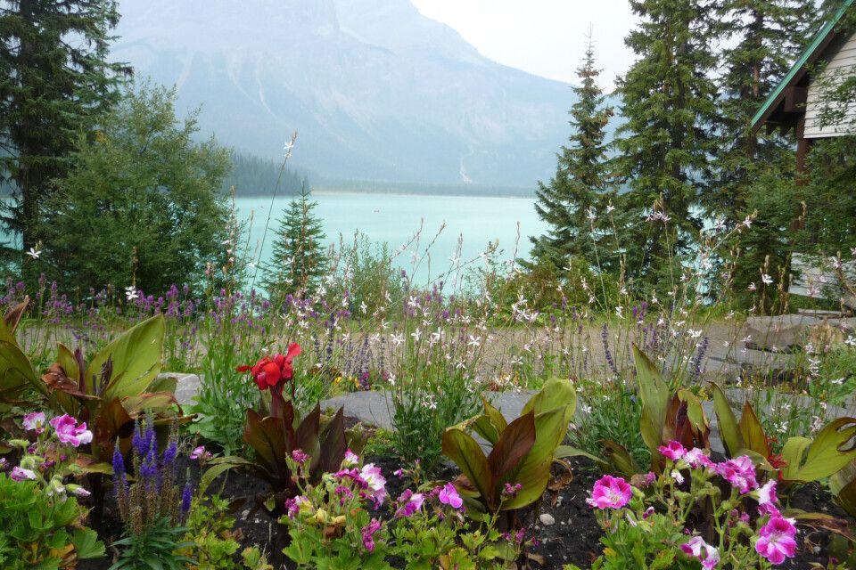 Blumenwunder am Emerald Lake