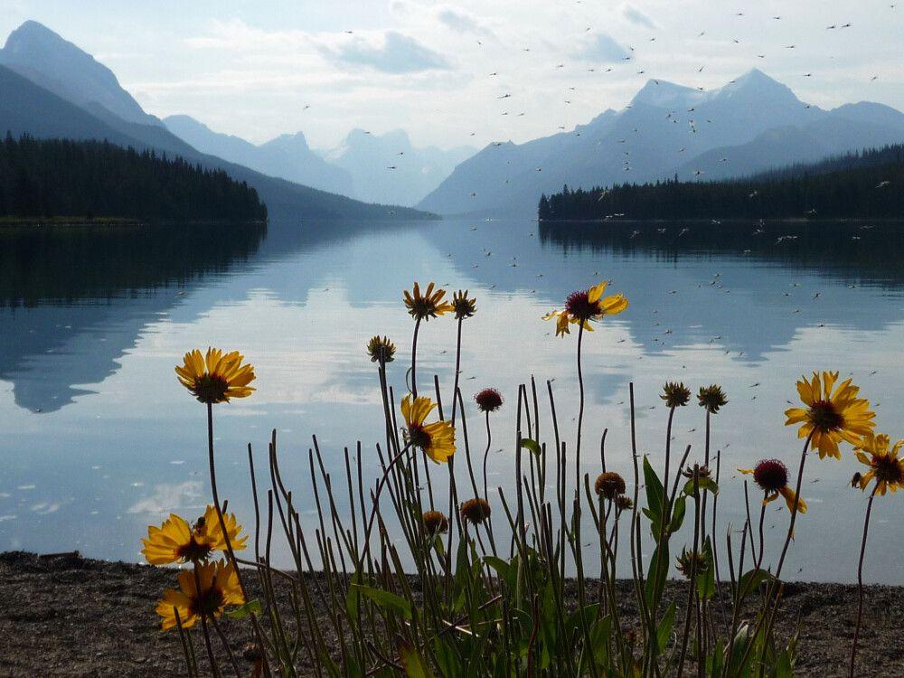 Malerischer Maligne Lake
