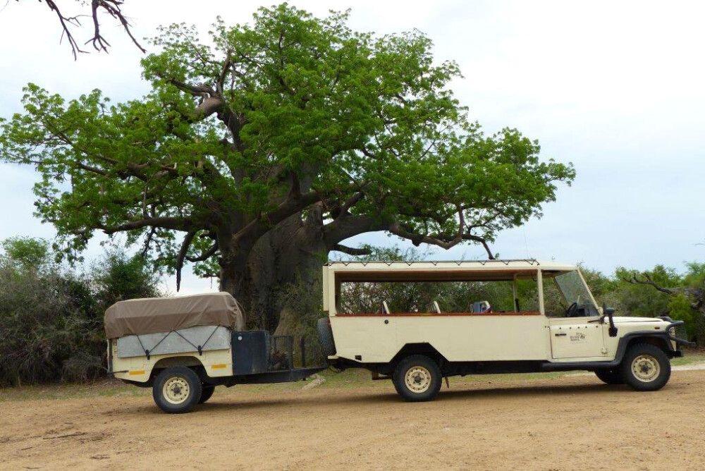 Safarifahrzeug mit Hänger