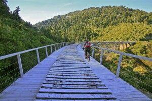 Auf dem Otago Rail Trail