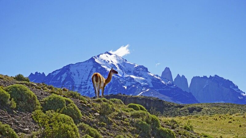 Nationalpark Torres del Paine © Diamir