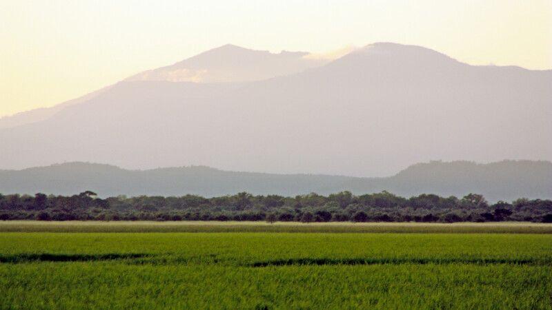 Safari im Gorongosa-Nationalpark © Diamir