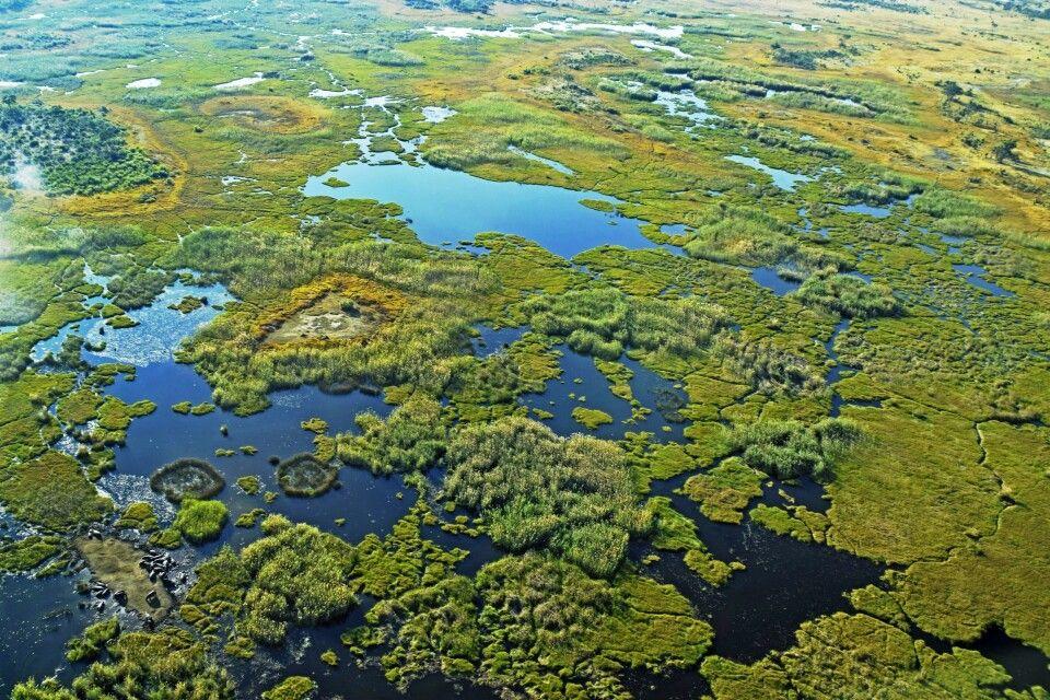 Okavango-Delta: das riesige Feuchtgebiet, lässt sich eigentlich nur aus der Luft begreifen.