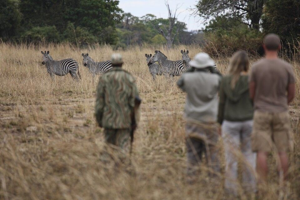 Walking Safari durch den South Luangwa NP