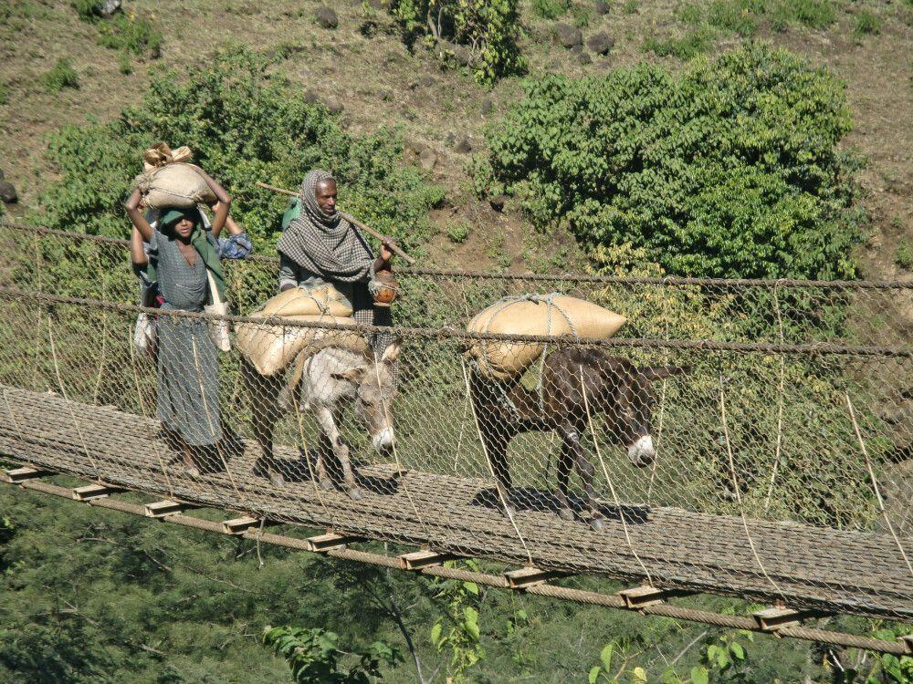 Bauern in Nordöthiopien