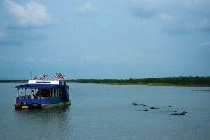 Bootfahrt St. Lucia Wetland Park