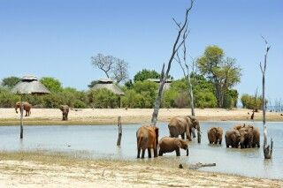 Rhino Safari Camp, Matusadona-Nationalpark, Simbabwe