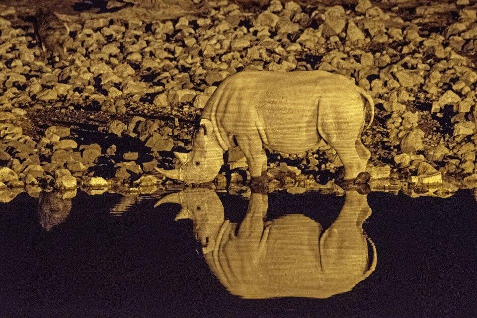 Nachts im Etosha-Nationalpark