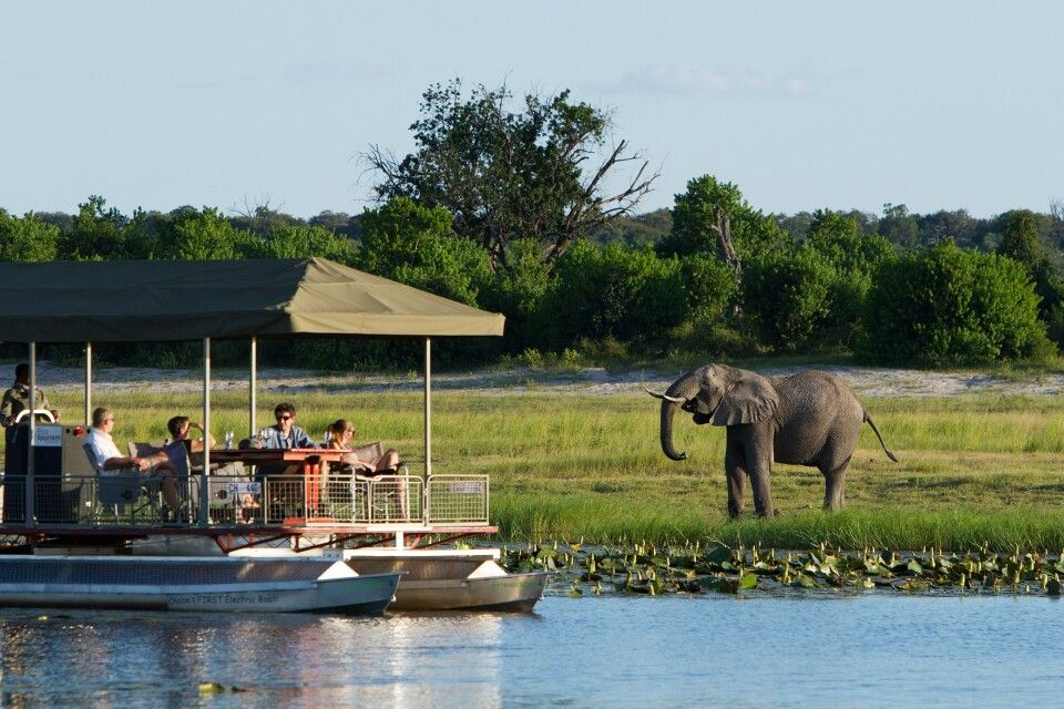 Chobe Game Lodge, Bootssafari