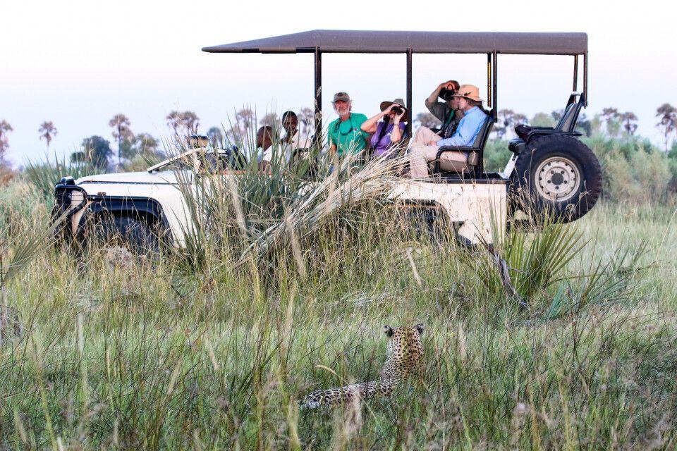 Safari im Okavango-Delta