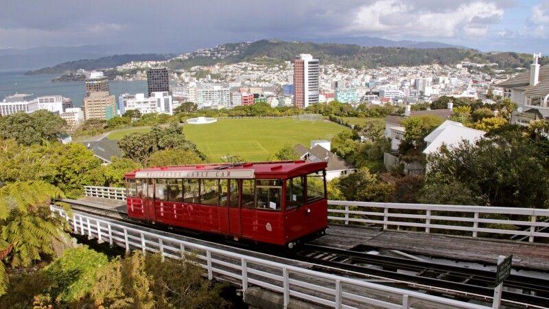 Blick über Wellington © Diamir