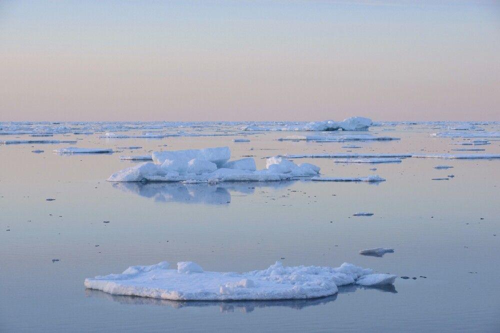 Kleinere Eisberge im Abendlicht – Scoresby-Sund
